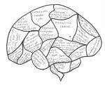 Blank brain entry number 5